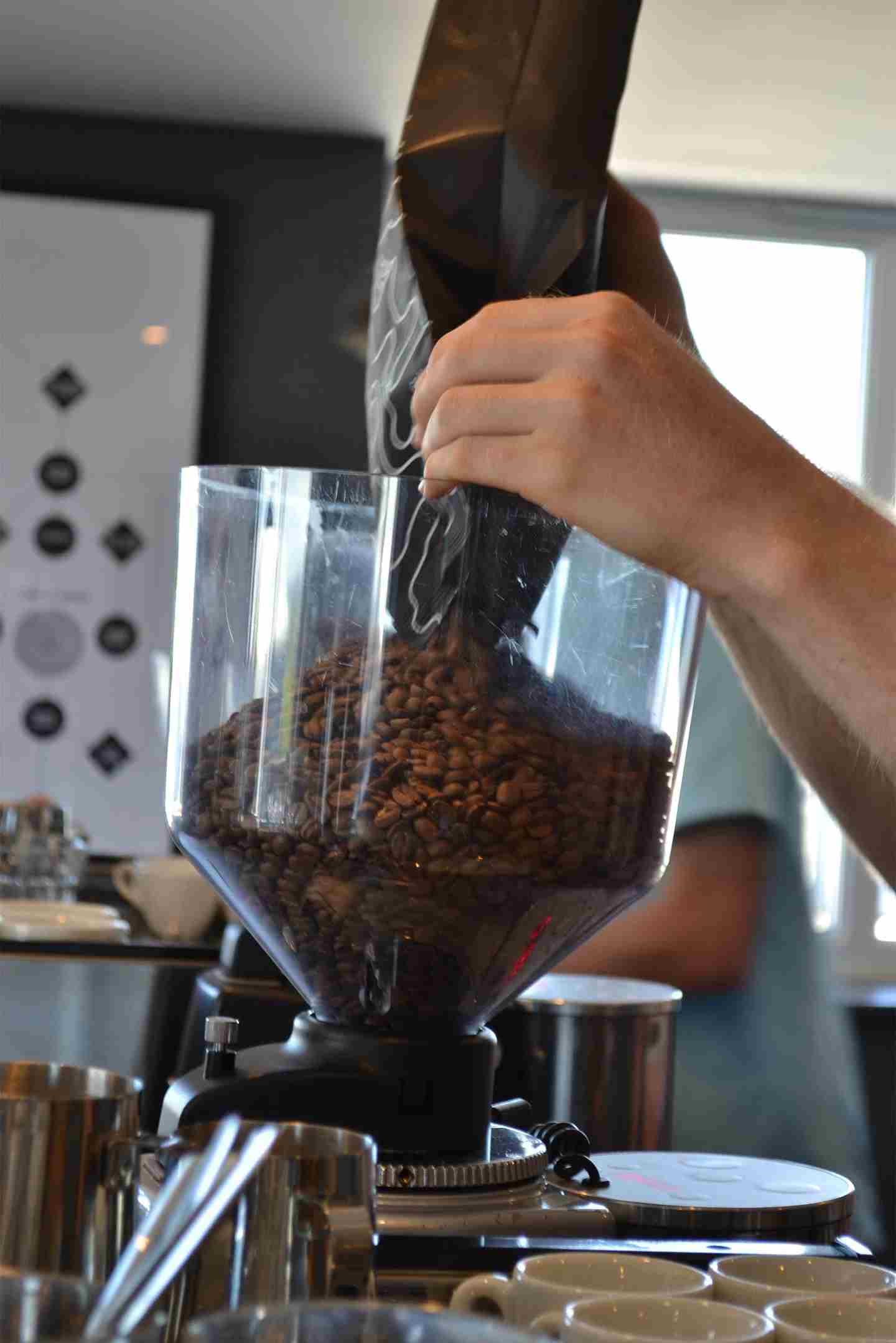 Pouring coffee beans.jpg