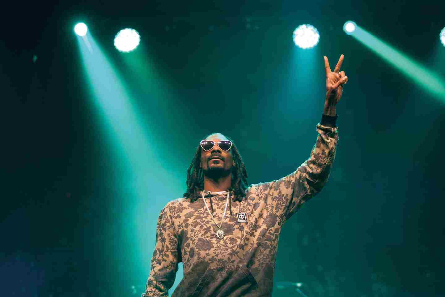 boardmasters-snoop-dog-copyright-Dan-Landsburgh.jpg