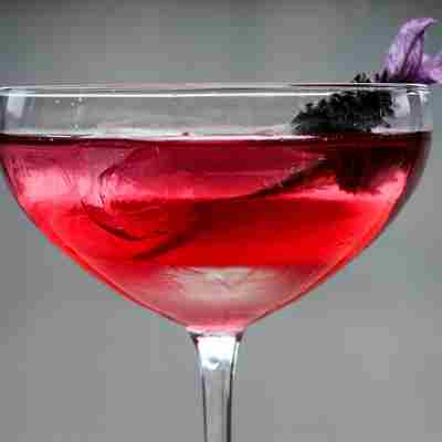 Blueberry--and-lavender-shrub-cocktail.jpg