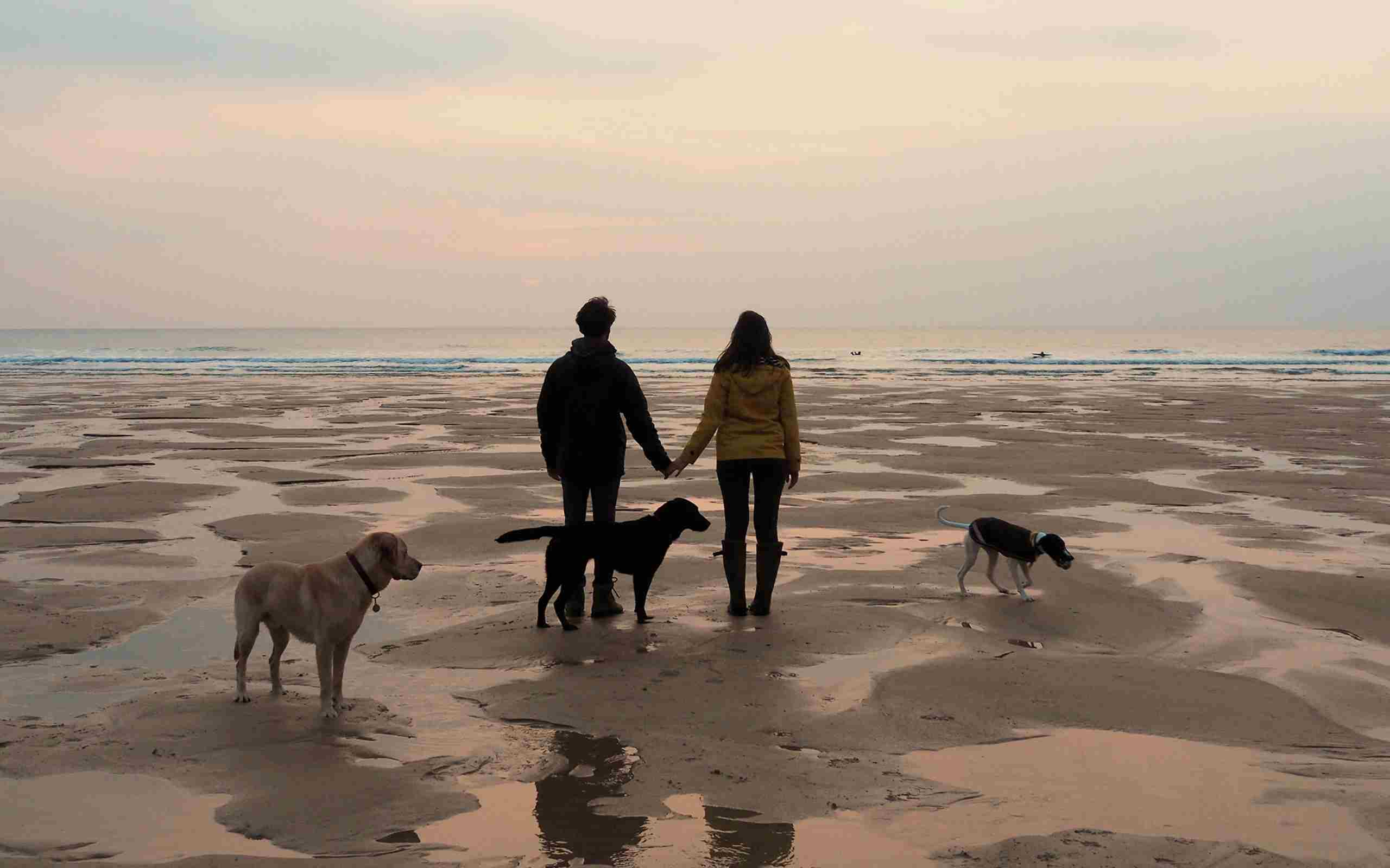 Couple-walking-dogs-on-the-beach.jpg (1)